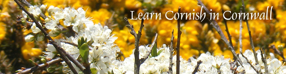 Learn Cornish in Cornwall